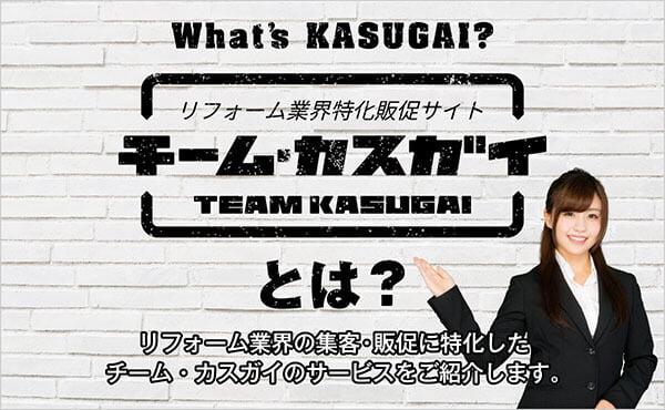 チーム・カスガイとは?